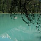 Emerald lake - Red Canoe by JimSanders