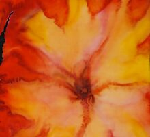 Fiery Hibiscus by Martha Andreatos