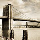 Stellar- Brooklyn Bridge by JennyChesnick