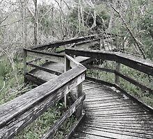 Neglected, Dilapidated Boardwalk by csproductions