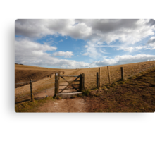 Walking the South Downs Canvas Print