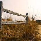 Fence at Sunset in Assateague by Jeff Holcombe