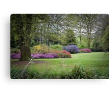 Azaleas in Springtime. Canvas Print