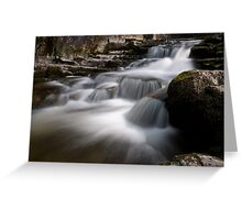 Lower West Burton stream Greeting Card