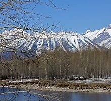 Snow Capped Peaks by Michelej
