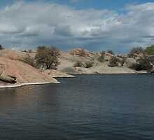 Water Line- Willow Lake, AZ by johntbell