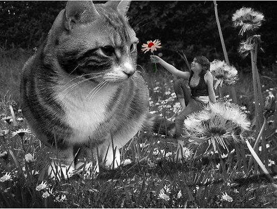 'One little flower' by Susie Hawkins