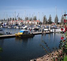 Colourful Marina - Yachts in Celebration by mottsey