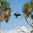 Pristine North Florida Calendar by Stacey Lynn Payne