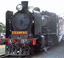 Steam Rail by Pauline Tims
