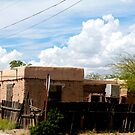 Corner Adobe House by Larry3