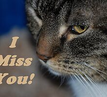 Cat I Miss You! by Jonice