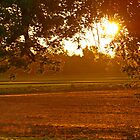 Sunrise at my House by Susan Blevins