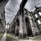 Kirkstall Abbey #03 by shutterjunkie