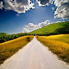 Road to Lago Pantaniello, Abruzzo, Italy by Fabio Catapane