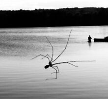 Water spider by Filosoho