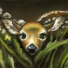 Peek-a-boo! little fawn by Tanya Bond by tanyabond