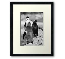 Penguin Walk Framed Print