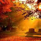 October Sunrise on the Cemetery by Gary Boudreau