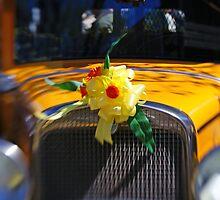 Old Car in Spring by mlentz