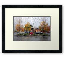 Colors of Fall - Denver, Colorado Framed Print