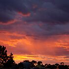 sunset out back o mine - autumn fiery red sunset by todski2