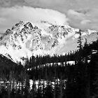 Shuksan in Black & White  by Appel