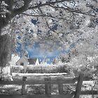 Dream Cottage 2 - Infrared by Ann Garrett