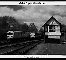 Quiet Day at Cheddleton by Aggpup