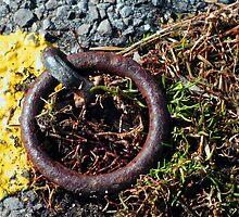 Rusty Ring by Caroline Anderson