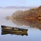 Lough Gill Tranquility by Hauke Steinberg