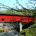Colemanville Covered Bridge by Hope Ledebur