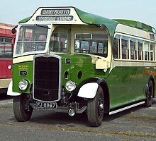 2011 Buses Old and Modern by Hertsman