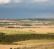 The Chiltern Hills by hinomaru