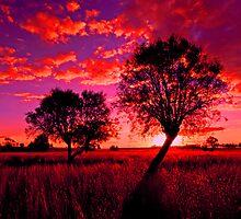 A rural sunset by GeoffSporne