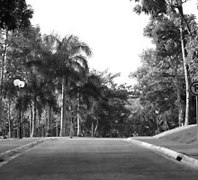 MMLDC pathway in Antipolo, Philippines (Black and White) by walterericsy