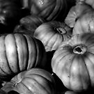 Pumpkins B&W by Eve Parry