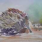 Echidna - Shy and Prickly Australian by Kay Cunningham