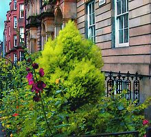 Sunny Morning, Mayfair by RC deWinter