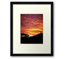 Shepherds Delite Framed Print