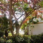 tree life by bizmarky