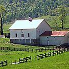 Virginia Farm by Monnie Ryan