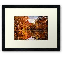 Autumn - In a dream I had Framed Print