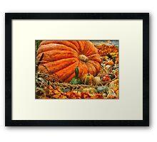 Pumpkin - Great Gourds Framed Print