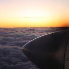 Flying in the heavens by Lee Popowski