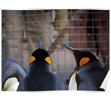 Role Reversal: Penguins at the Human Enclosure Poster