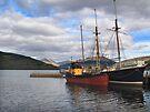 Boats on Loch Fyne by Carol Bleasdale