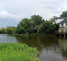 Ninoy Aquino Park and Wildlife Nature Center Lagoon Cottage view by walterericsy