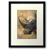 Female Rhino Getting Her Point Across Framed Print