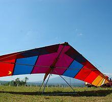 para glide by bayu harsa
